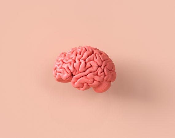 mozgova-prihoda